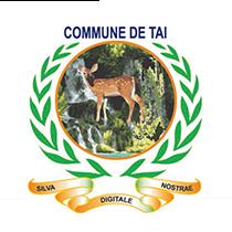 Commune de Taï