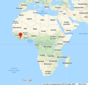 Parc National de Taï en Afrique